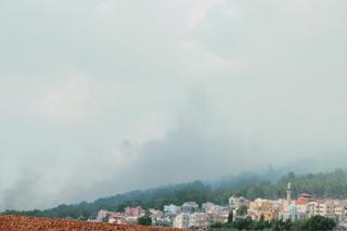 Um El Ghanem Lower Galilee Massive Garbage Burning