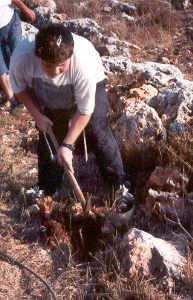 Volunteer working the land