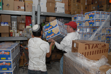 Unpacking boxes of matza